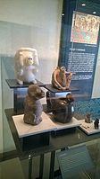 Antropología - Museo Nacional de Antropología ovedc wikimania 051.jpg