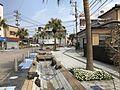 Aoshima-Ekimae-dori Street 2.jpg