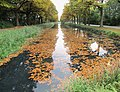 Apeldoorns Kanaal in de herfst.jpg