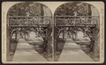 Approach to Amphitheatre from Simpson Avenue, by Walker, L. E., 1826-1916.png