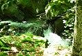 Apriltzi, Bulgaria - panoramio (19).jpg