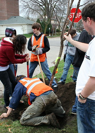 Arbor Day - Volunteers planting a tree for Arbor Day (Rochester, Minnesota, 2009)