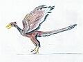 Archaeopteryx EF.jpg