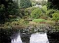 Arduaine Gardens - geograph.org.uk - 331020.jpg