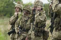 Army Reservists Applying Camouflage MOD 45156159.jpg