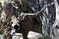 Army Sniper (13453502285).jpg