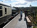 Arrival from Buckfastleigh - geograph.org.uk - 1252363.jpg