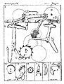 Arte de reloxes de ruedas para torre sala i faltriquera-206.jpg