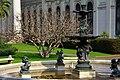 Arvore seca - dry tree - Camara de Diputados (14947812941).jpg