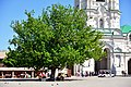 Astrakhan Kremlin Cathedral square.jpg