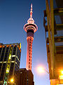 Auckland Tower at Night.jpg