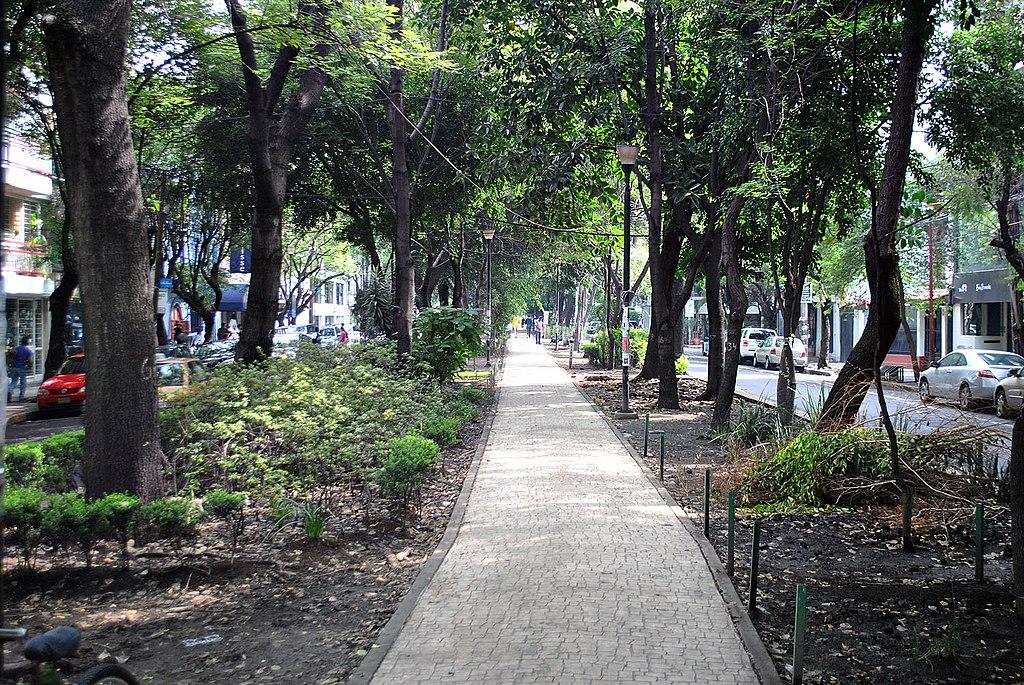 Avenida Amsterdam - Colonia Condesa 2.JPG