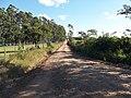 Avenida Dezessete de Dezembro - Palma - Santa Maria, foto 05 (sentido N-S).jpg - panoramio.jpg