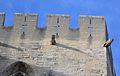 Avignon - Palais des papes 4.JPG