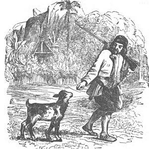 Avventure di Robinson Crusoe 0164 0