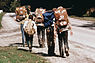 Boy Scouts Hiking the Cuyahoga Trail