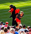 Baltimore Orioles bird with fan (7356638506).jpg