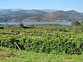 Bamio, Vilagarcía de Arousa, Galiza. 090830 025.jpg