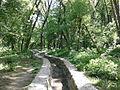 Banjička šuma 008.jpg