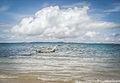 Barco - Ilha do Frade.jpg