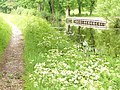 Basingstoke Canal by Hermitage - geograph.org.uk - 820742.jpg