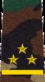Belarus MIA—08 Senior Lieutenant rank insignia (Camouflage).png