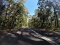 Benandarah NSW 2536, Australia - panoramio (15).jpg