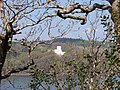 Benton Castle - geograph.org.uk - 407464.jpg