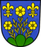 Coat of Arms of Berg