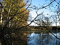 Big Pond, Croxteth Country Park - geograph.org.uk - 284777.jpg