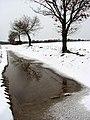 Big puddle - geograph.org.uk - 735632.jpg