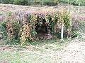 Bigues i Riells. Riells del Fai. Font de Can Quintanes 4.JPG