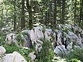 Bijele i samarske stijene2.JPG