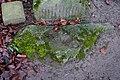 Bildstock Bad Waldsee-1340.jpg