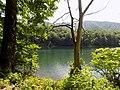 Biogradska gora - National Park, the oldest protected natural resource in Montenegro 14.jpg