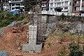 BirG069-Dharamsala.jpg