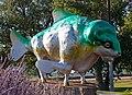 Bison Fish (8037111541).jpg