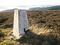 Black Law triangulation pillar - geograph.org.uk - 1619284.jpg