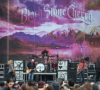 Black Stone Cherry - Image: Black Stone Cherry 2014