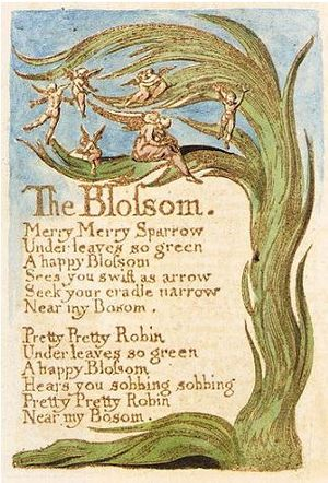 The Blossom - The Blossom, Songs of Innocence and of Experience, copy C, 1789, 1794 (Library of Congress) object 10