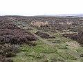 Blanchland Moor - geograph.org.uk - 1280101.jpg