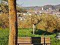 Blick nach Herrenberg mit Stiftskirche und Schlossberg - panoramio.jpg