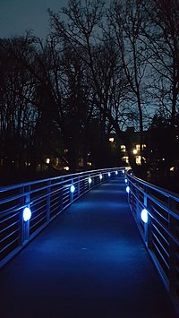 Blue Bridge, Reed College, 2016.jpg