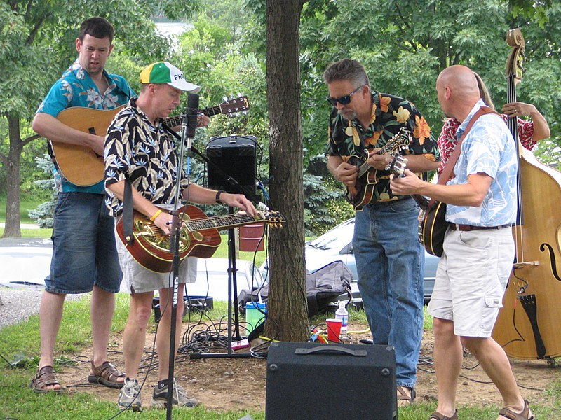Bluegrass pickin%27.jpg