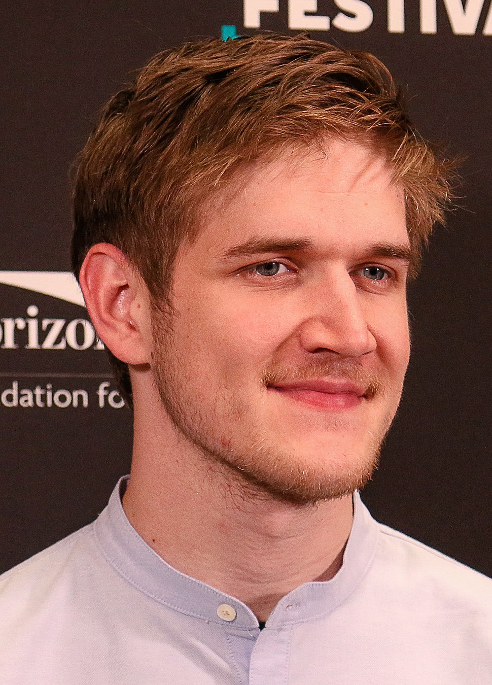 Bo Burnham Montaclair Film Festival (cropped)