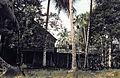 Borneo1981-019.jpg