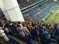 Bosnia-Herzegovina fans at Arena Pantanal, Cuiabá (2014 FIFA World Cup).jpg