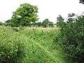 Boudica's Way past Saxlingham Nethergate - geograph.org.uk - 1384242.jpg
