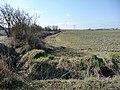 Boundary between field and Newstead Lane - geograph.org.uk - 1748995.jpg