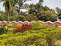 Boundary wall of Shilaidaha Rabindra Kuthibadi planed and designed by the poet Rabindranath which is like the waves of the river Padma. 2.jpg